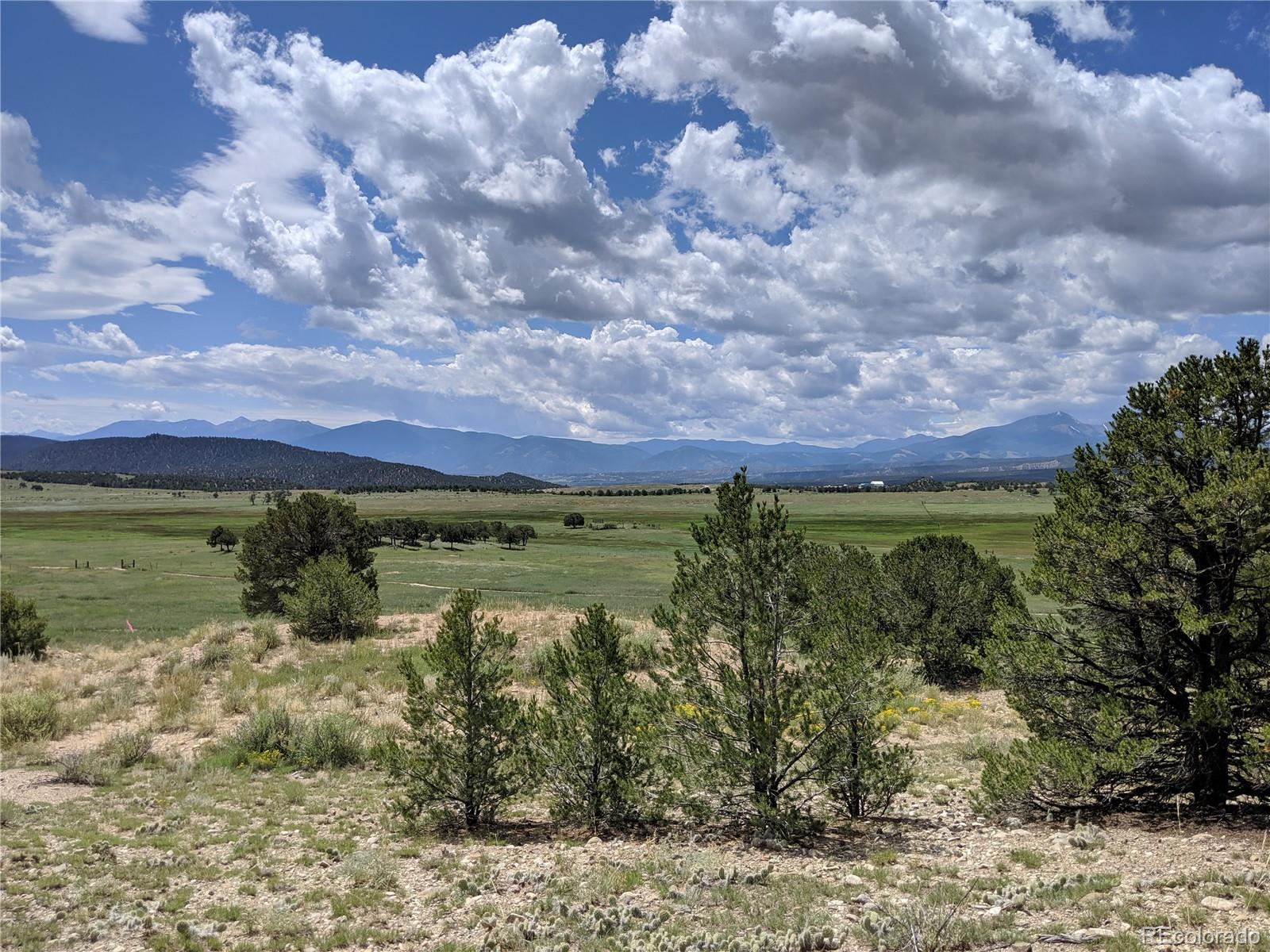 Lot 21 Property Photo - Nathrop, CO real estate listing