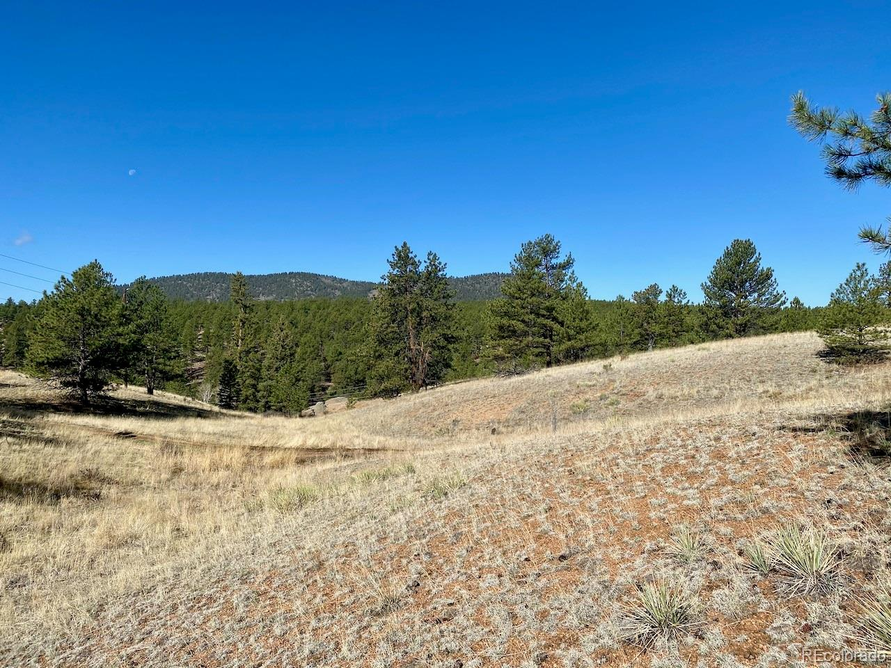 377 Freeman Drive Property Photo - Florissant, CO real estate listing