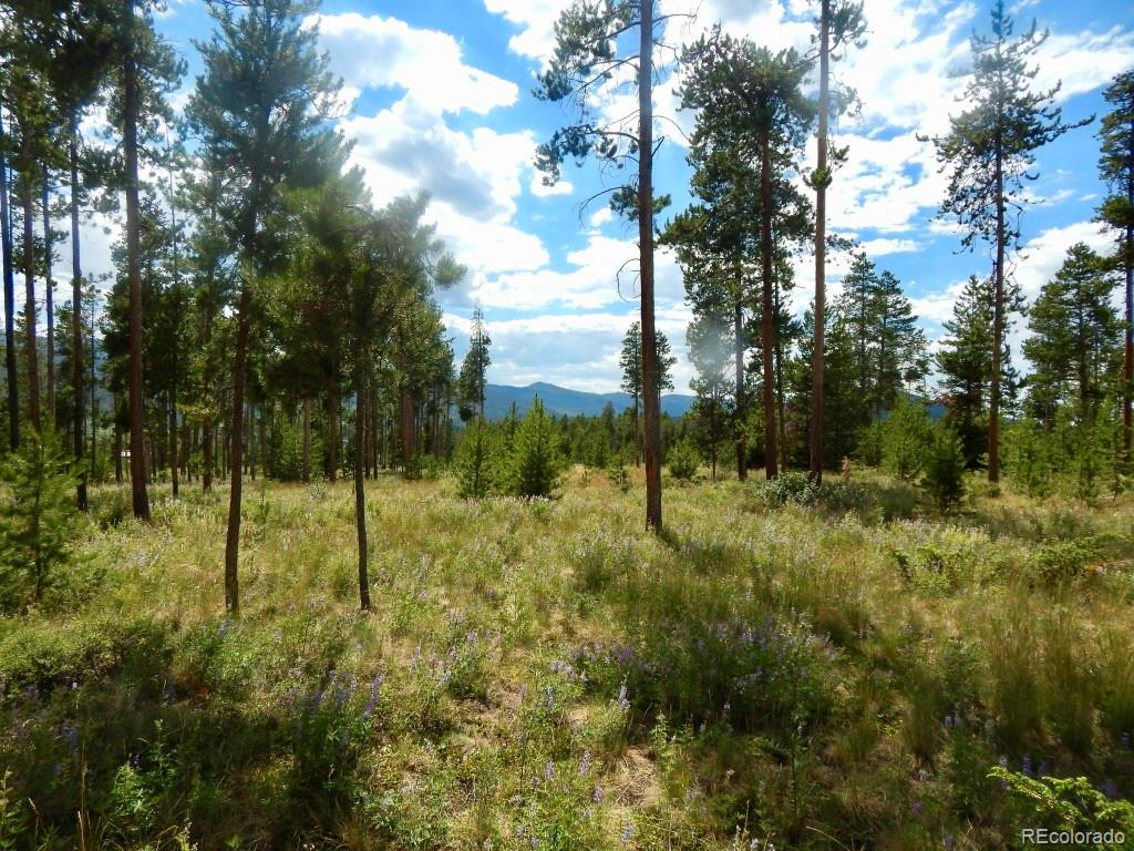 213 County Road 5112 Property Photo - Tabernash, CO real estate listing