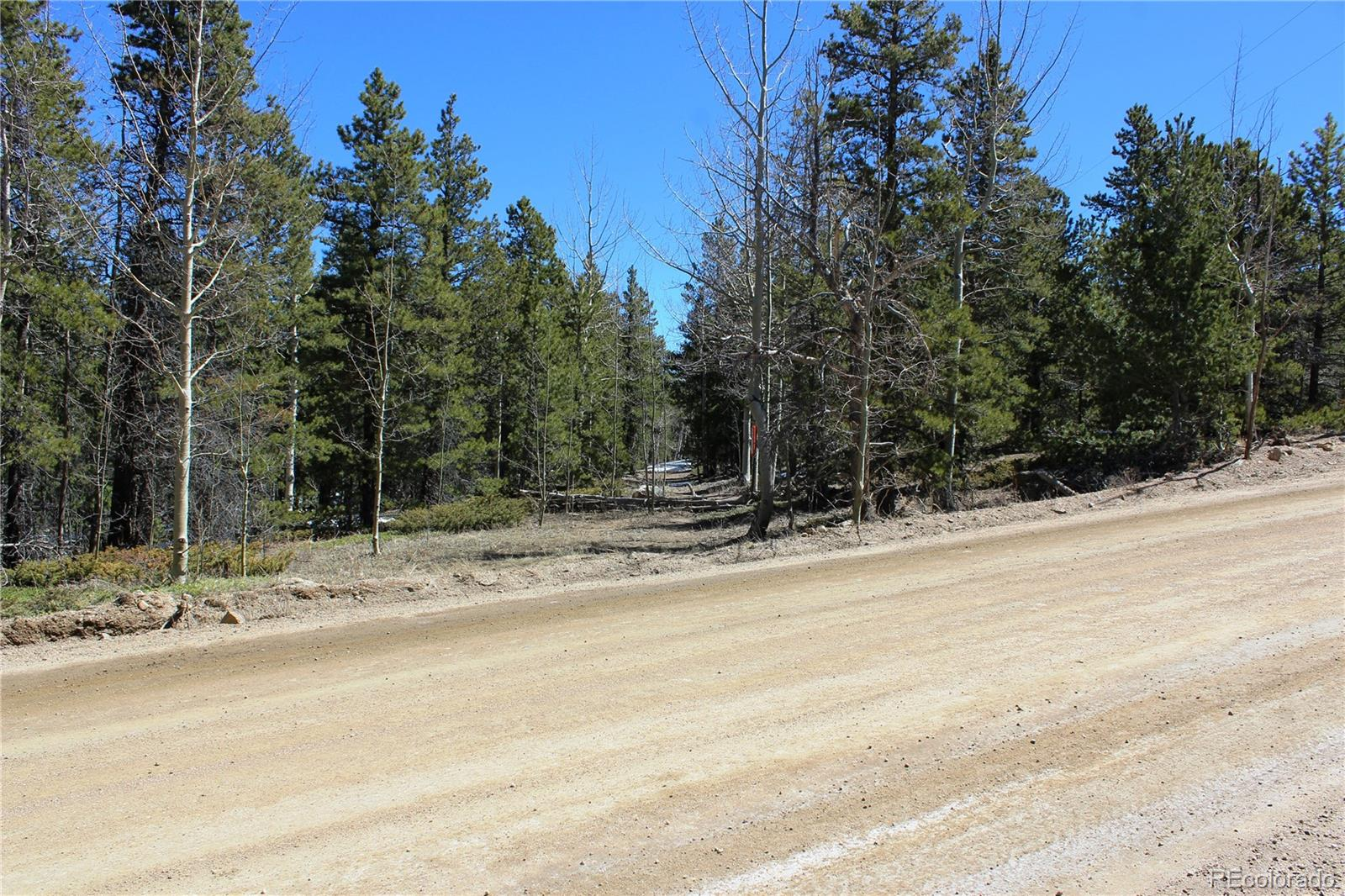 3000 Bald Mountian Road Property Photo - Central City, CO real estate listing
