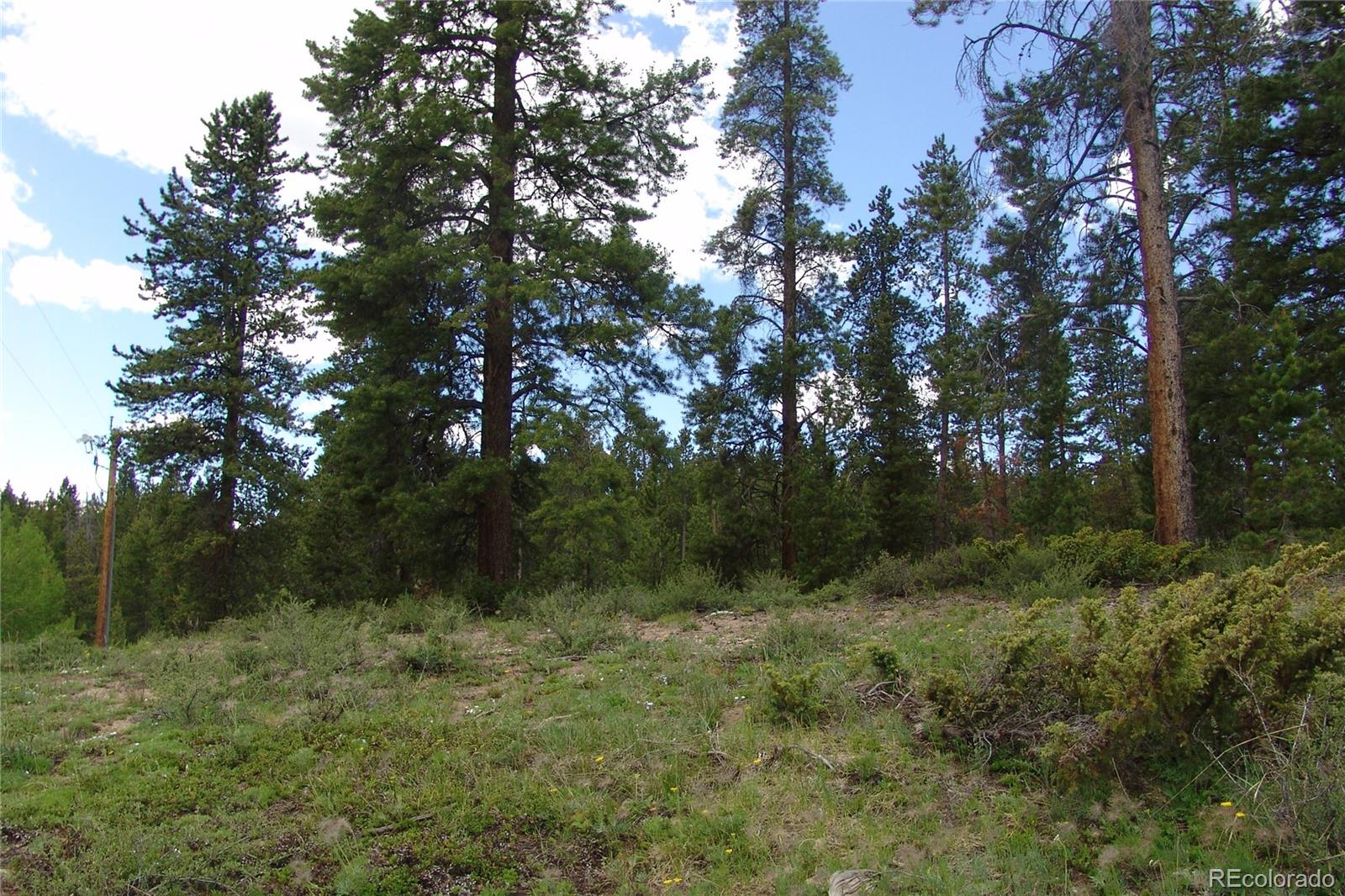 Lot 16 GCR 85 Property Photo - Tabernash, CO real estate listing