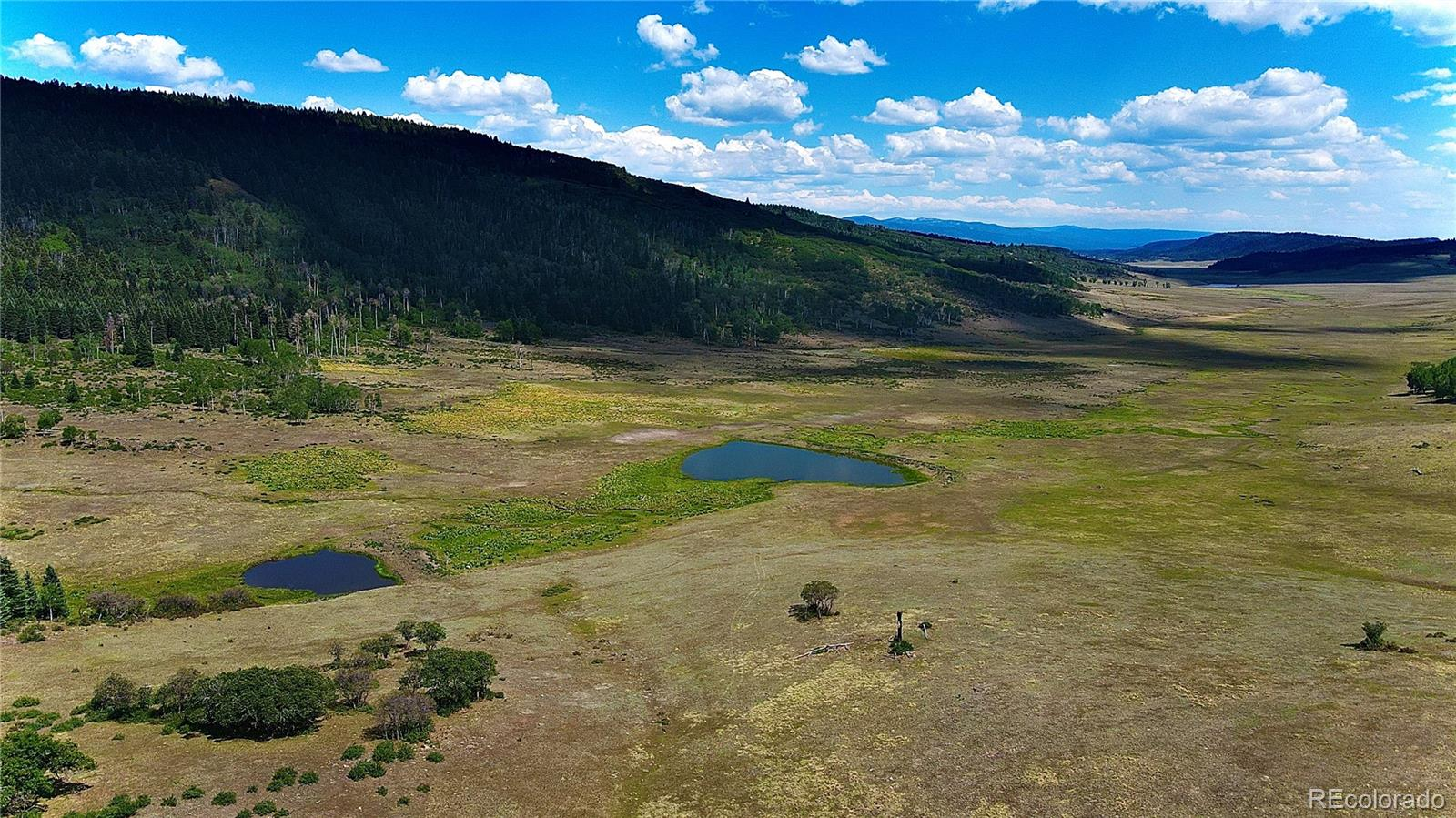 P10 County Road 382 Property Photo - Chromo, CO real estate listing