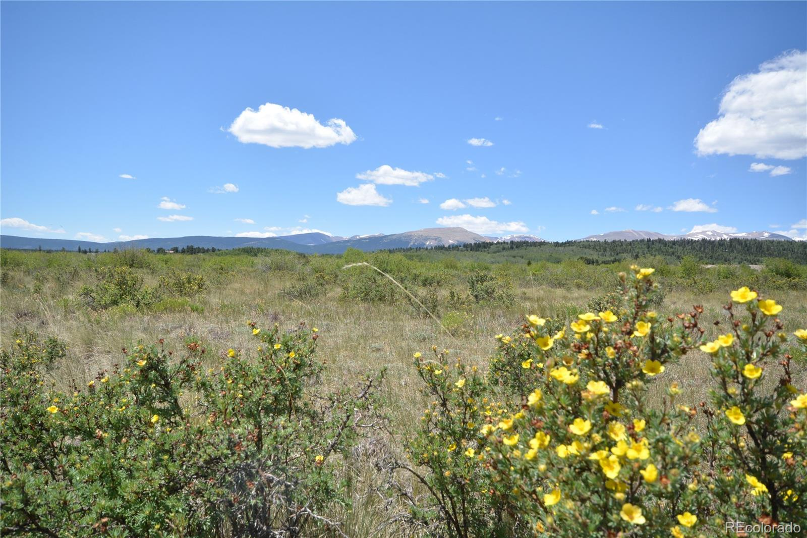253 Silverheels Road Property Photo - Fairplay, CO real estate listing