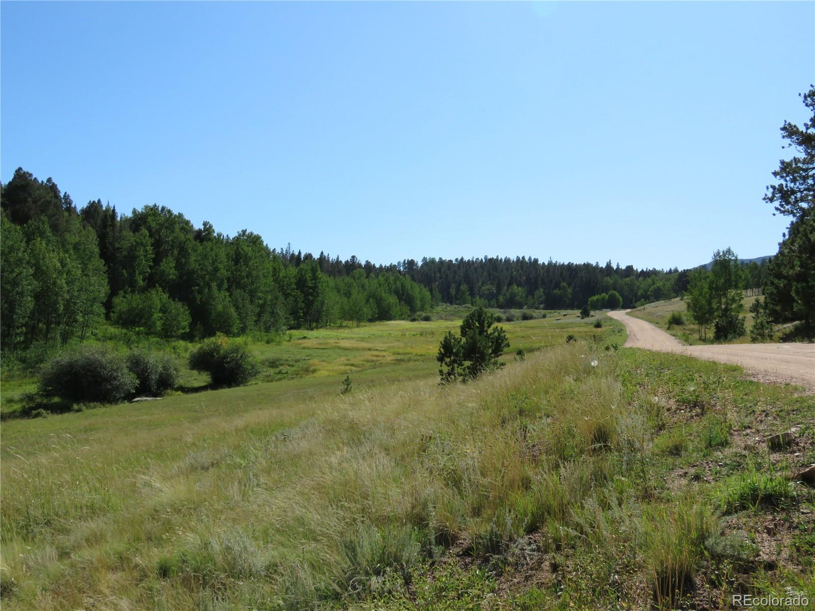 522 Hidden Valley Drive Property Photo - Lake George, CO real estate listing