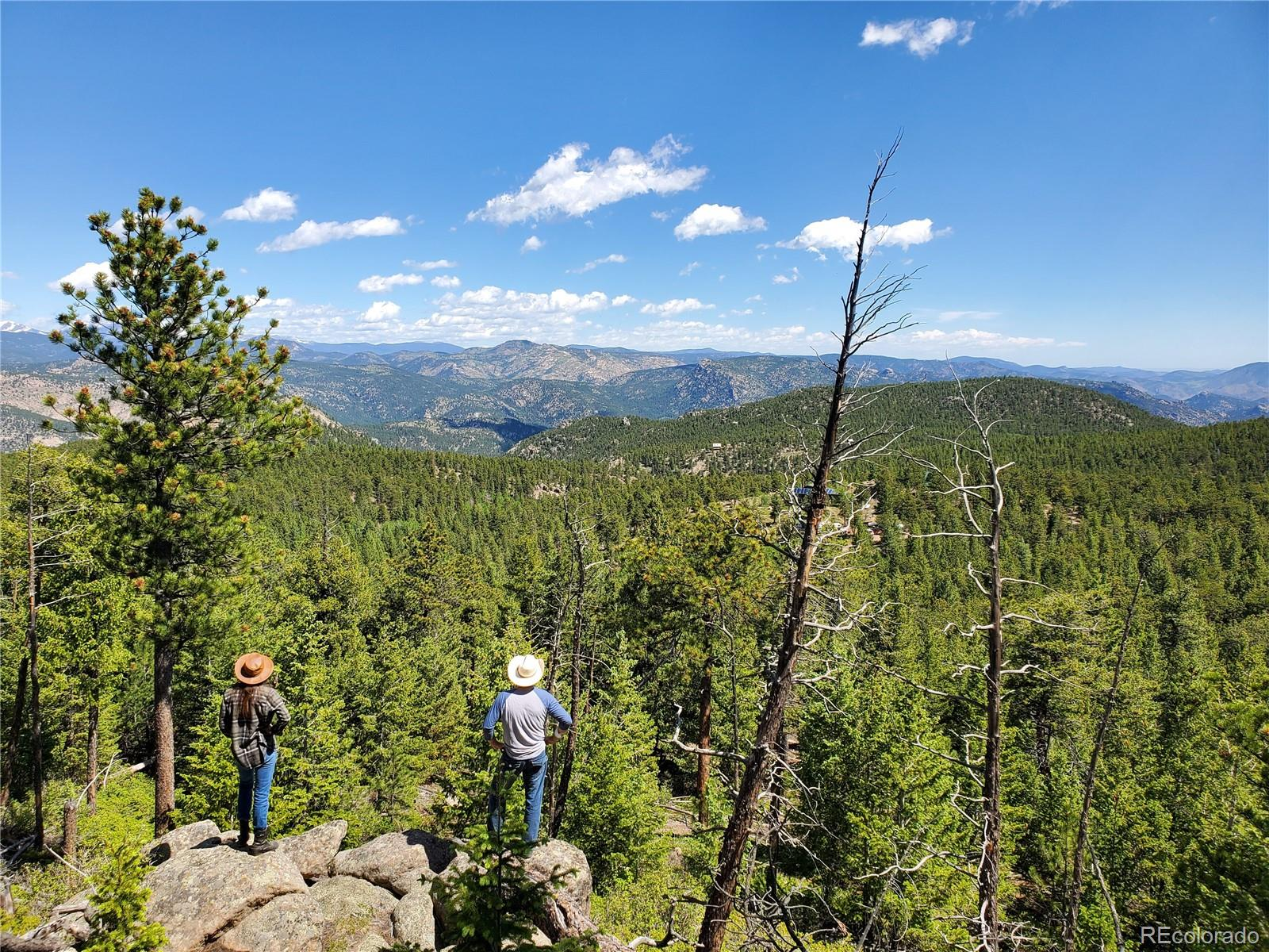 3222 Conifer Hill Road Property Photo - Lyons, CO real estate listing