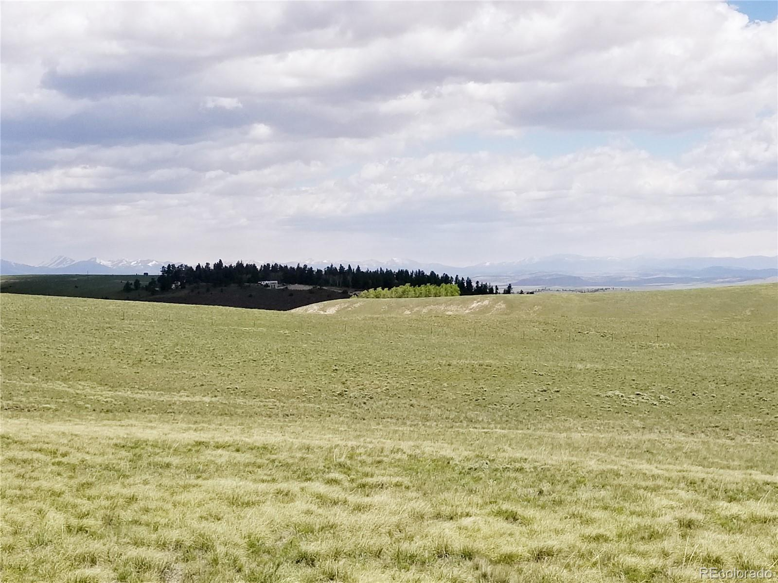 100 Hereford Court Property Photo - Hartsel, CO real estate listing