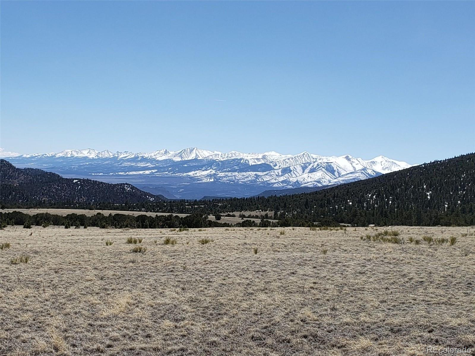 10629 8617 Cty Rd 12 Property Photo - Cotopaxi, CO real estate listing
