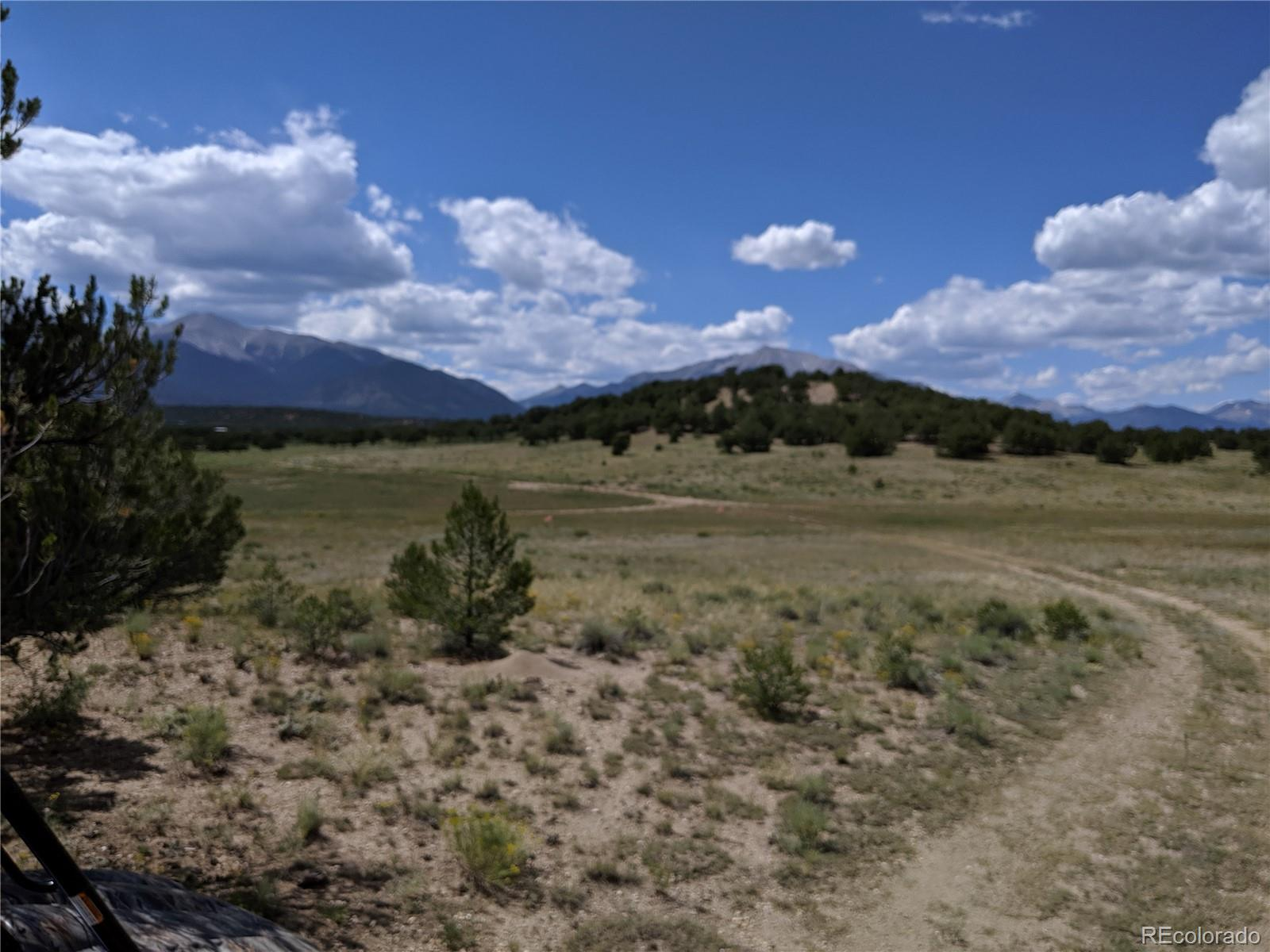 Lot 13 Property Photo - Nathrop, CO real estate listing