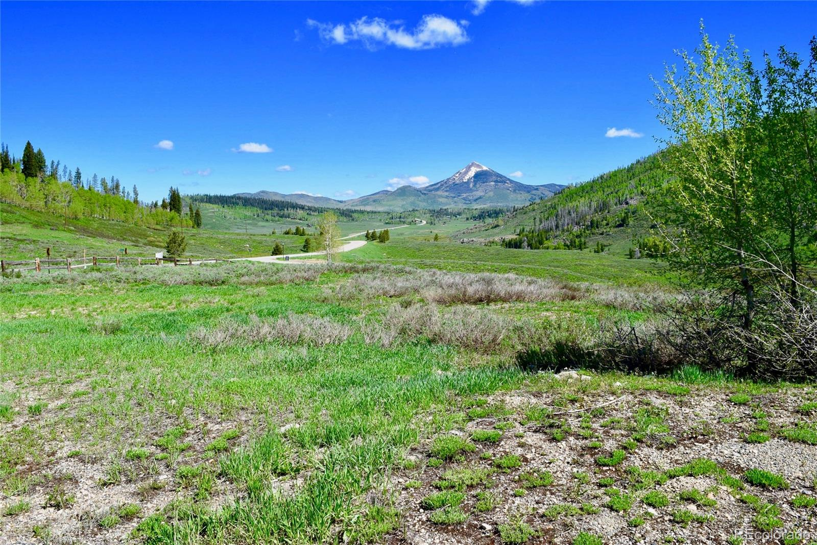 27215 Golden View Trail Property Photo - Clark, CO real estate listing