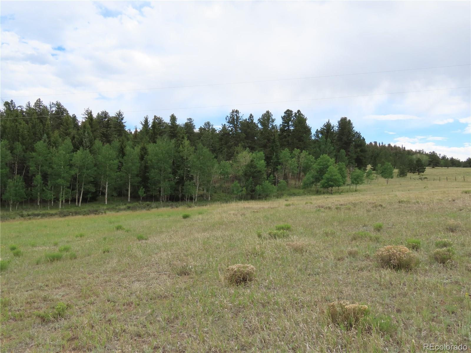 274 Lariat Drive Property Photo - Florissant, CO real estate listing