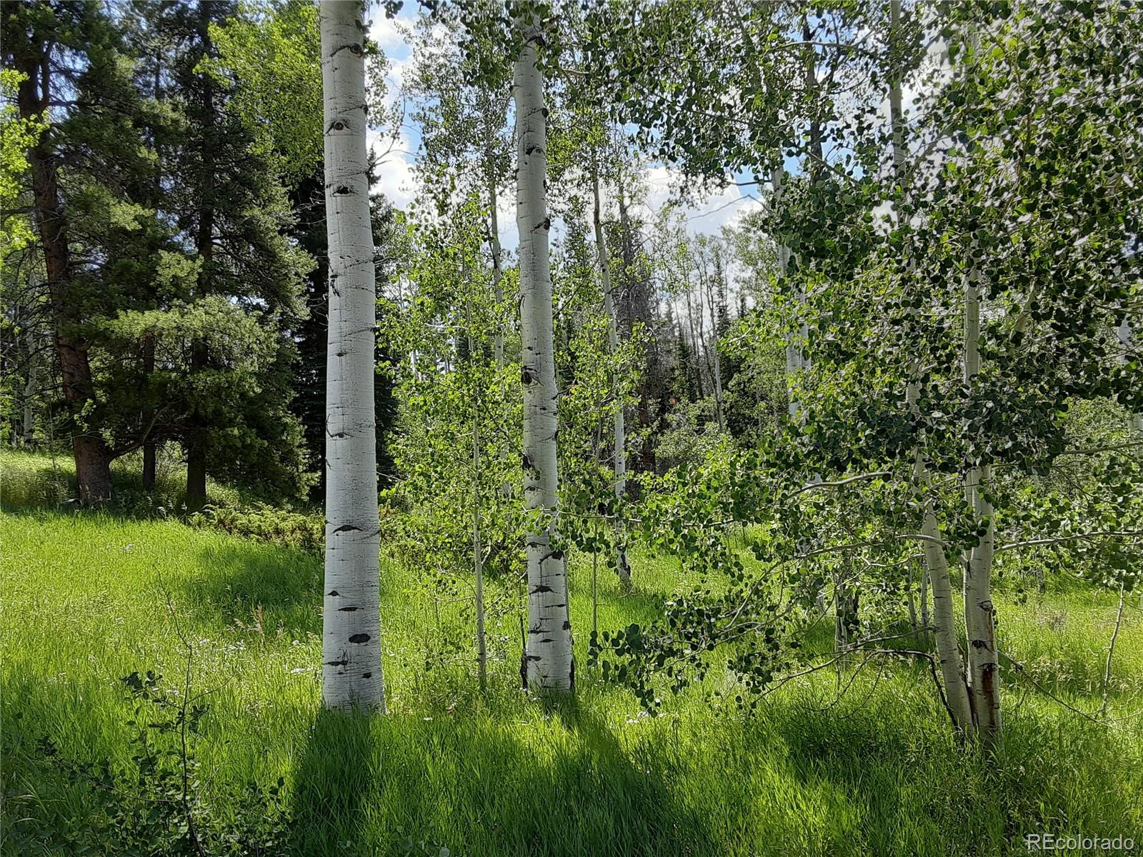 22700 Red Cloud Way Property Photo - Oak Creek, CO real estate listing