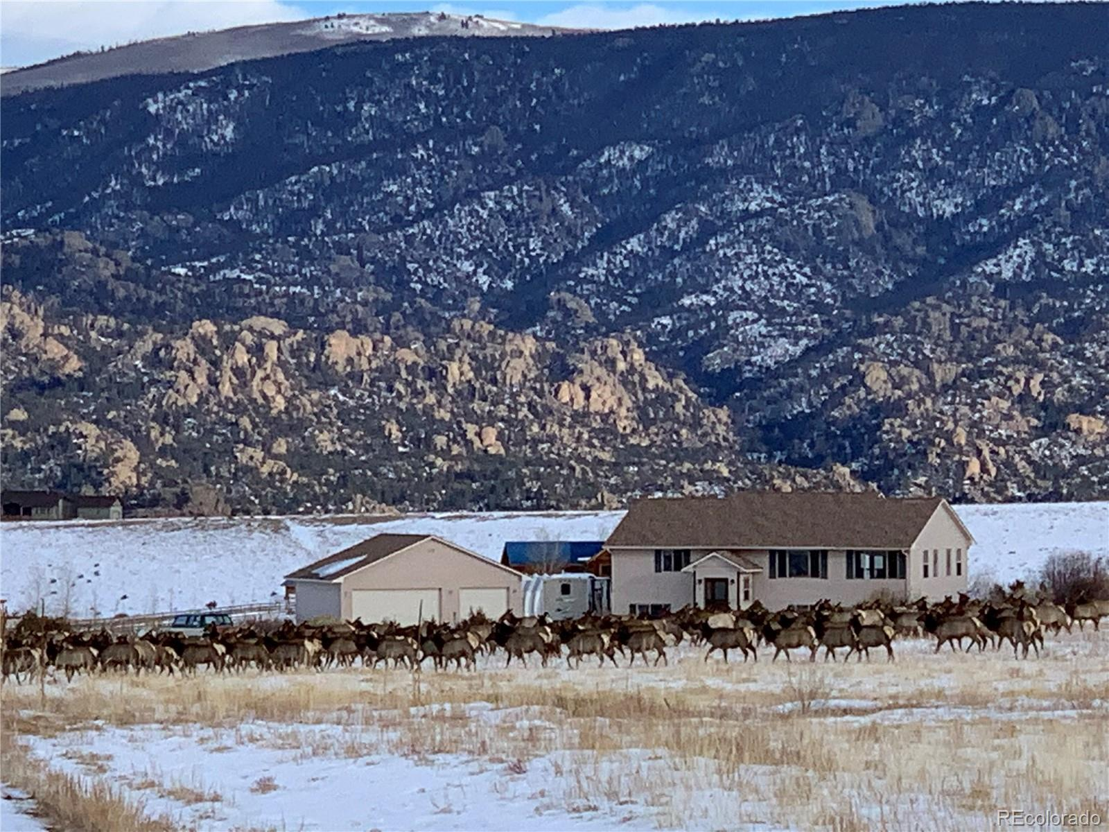 13879 NW County Road 270, Nathrop, CO 81236 - Nathrop, CO real estate listing