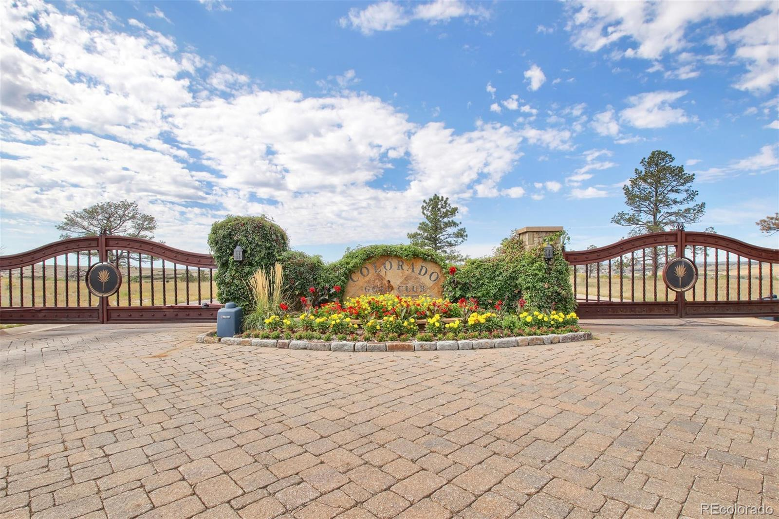 8508 Witez Court Property Photo - Parker, CO real estate listing