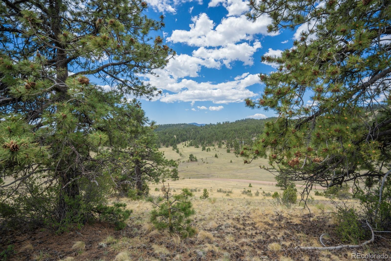 Lot 25A Julia Road Property Photo - Guffey, CO real estate listing