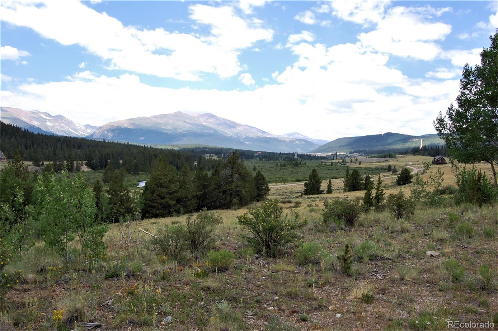 0 Cottage Grove Road Property Photo - Alma, CO real estate listing