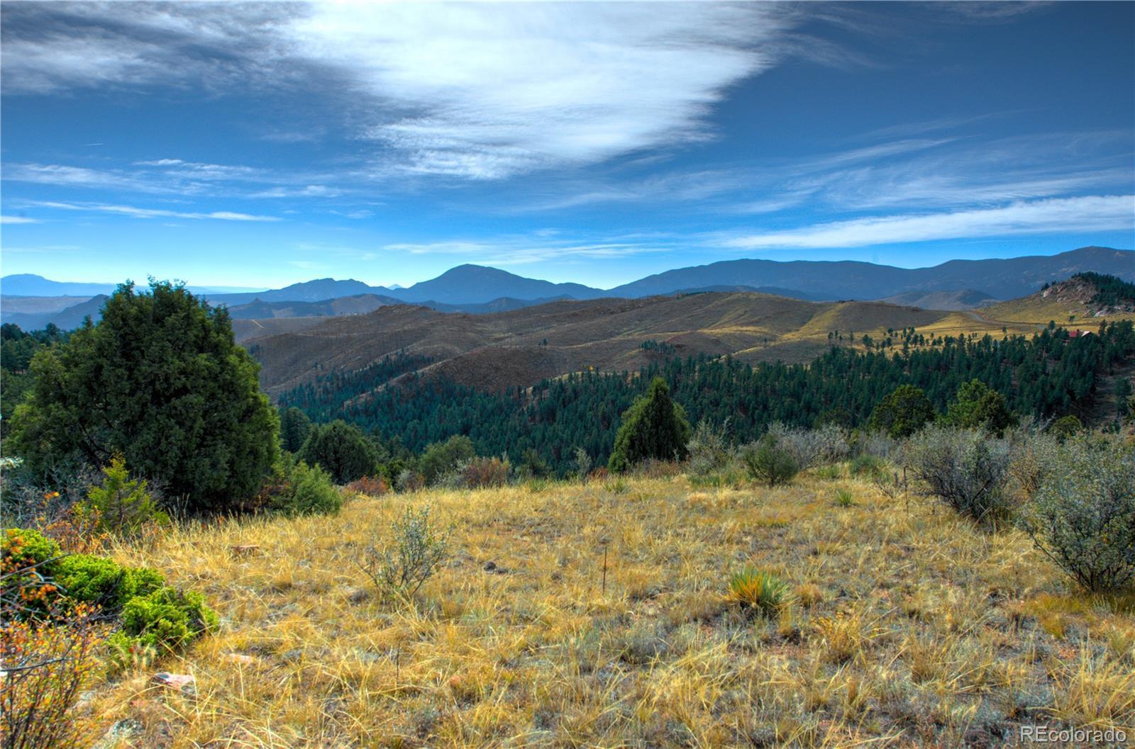 31986 Half Peak Trail Property Photo - Pine, CO real estate listing