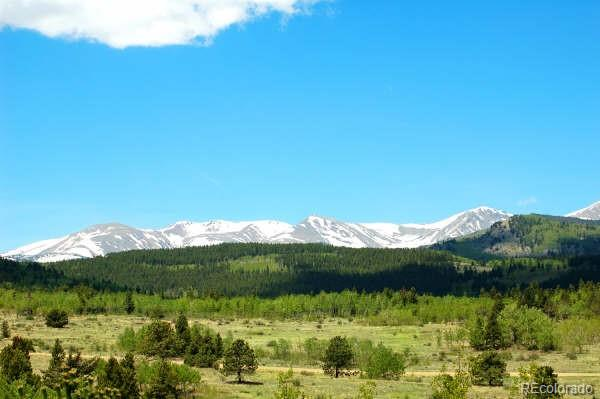 Parcel 21 A Bald Mountain Road Property Photo - Central City, CO real estate listing