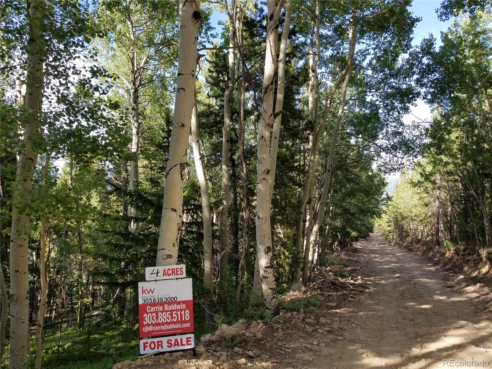 South Spring Gulch Road Property Photo - Idaho Springs, CO real estate listing