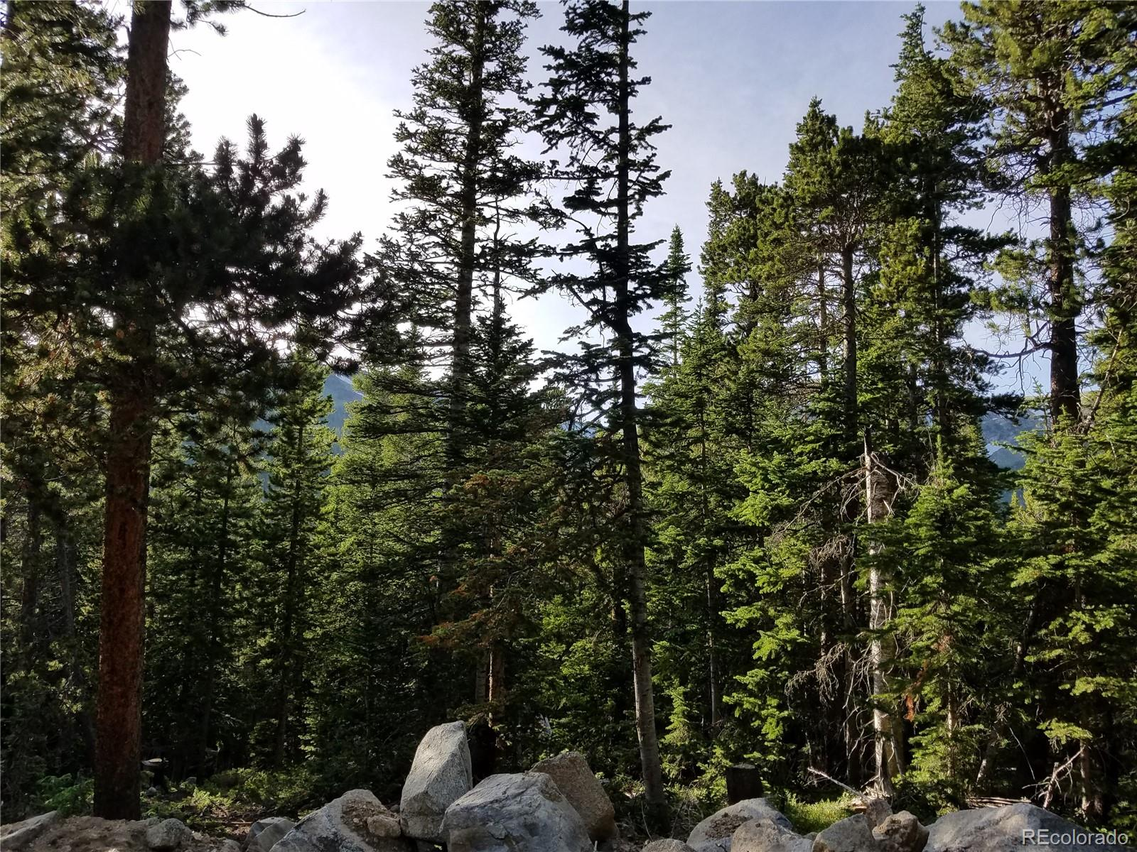 Crest Way Property Photo - Idaho Springs, CO real estate listing