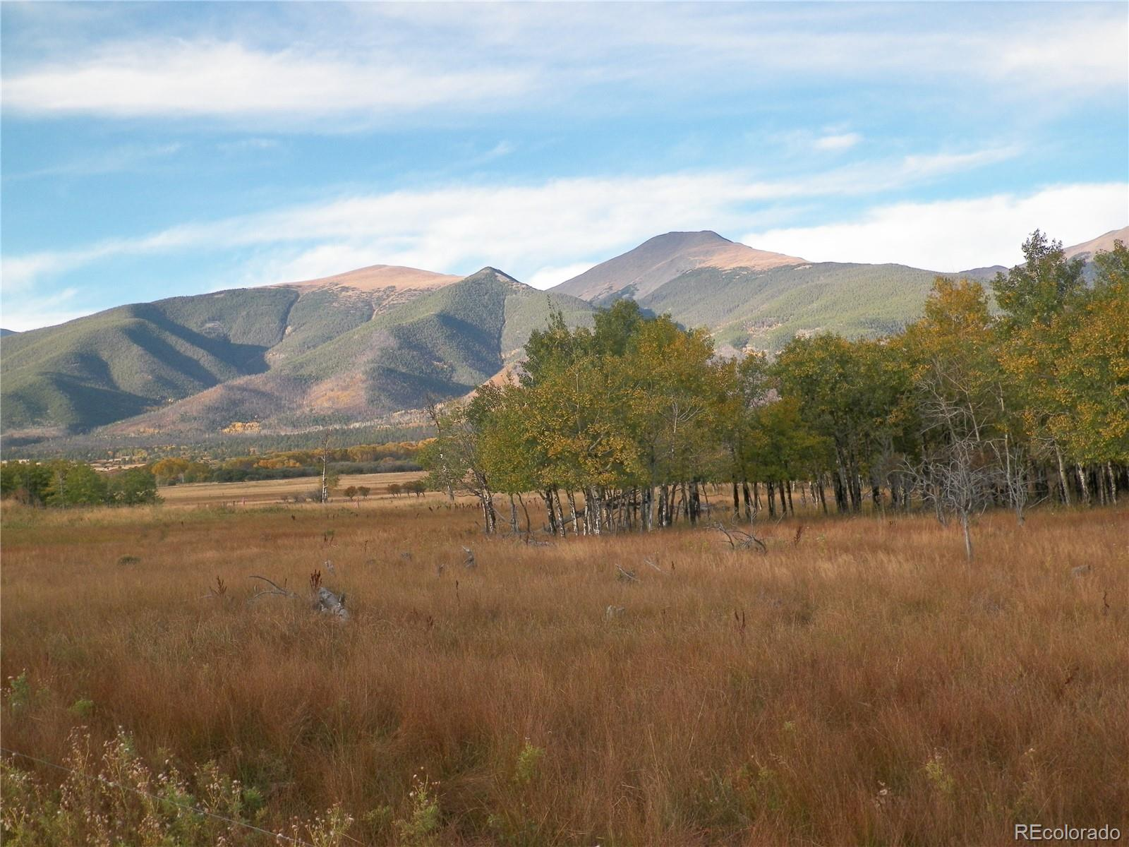 245 BRANDING IRON Property Photo - Cotopaxi, CO real estate listing