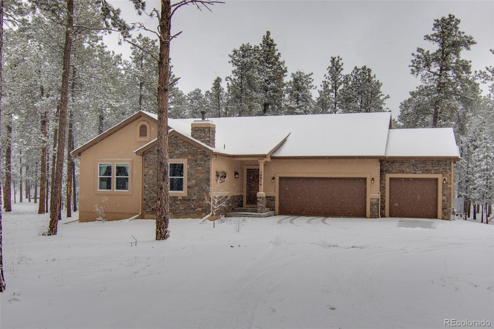 10956 Silver Mountain Point Property Photo - Colorado Springs, CO real estate listing