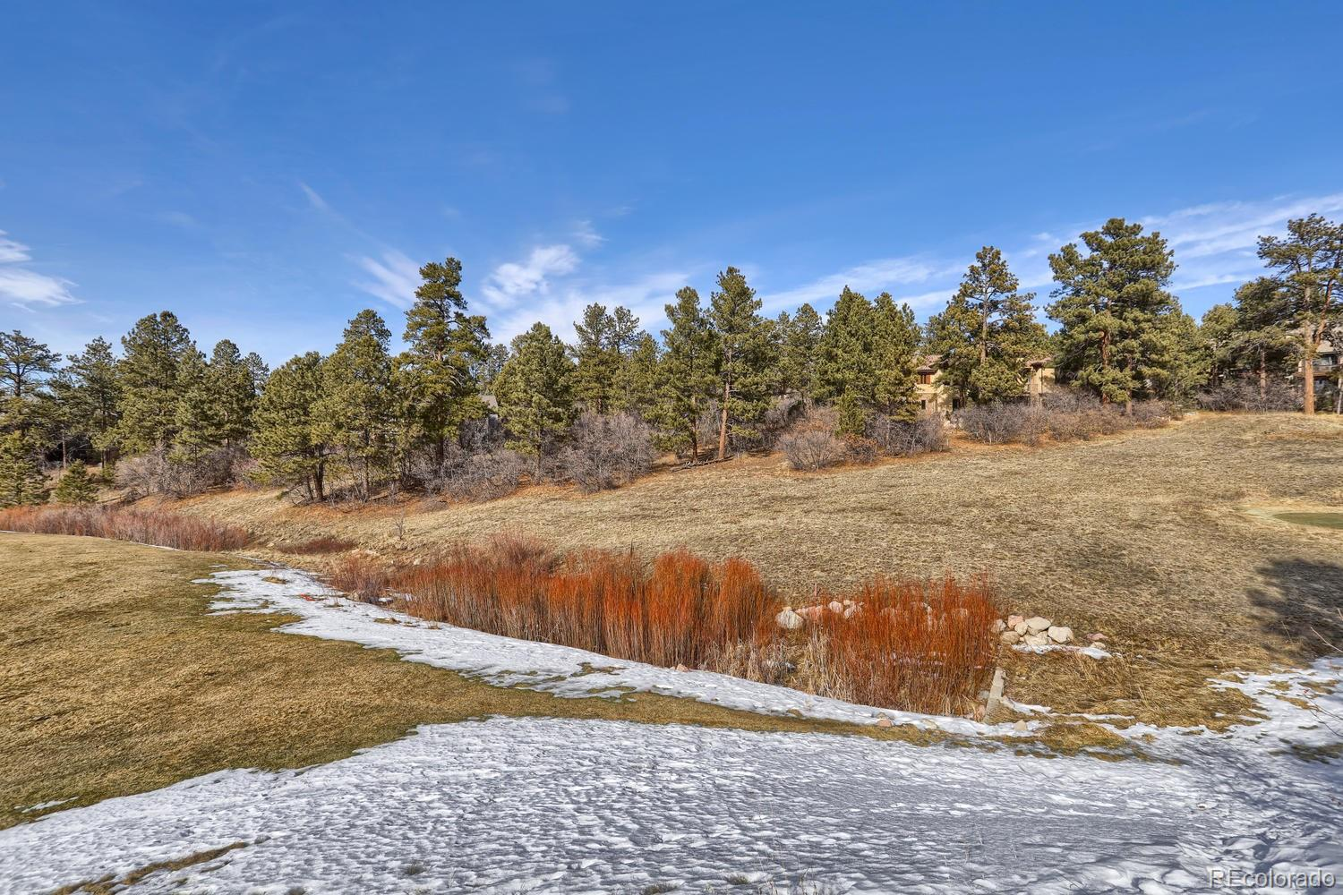 970 Country Club Parkway Property Photo - Castle Rock, CO real estate listing