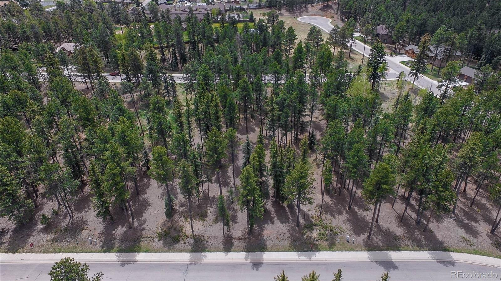 625 Chipmunk Drive Property Photo - Woodland Park, CO real estate listing