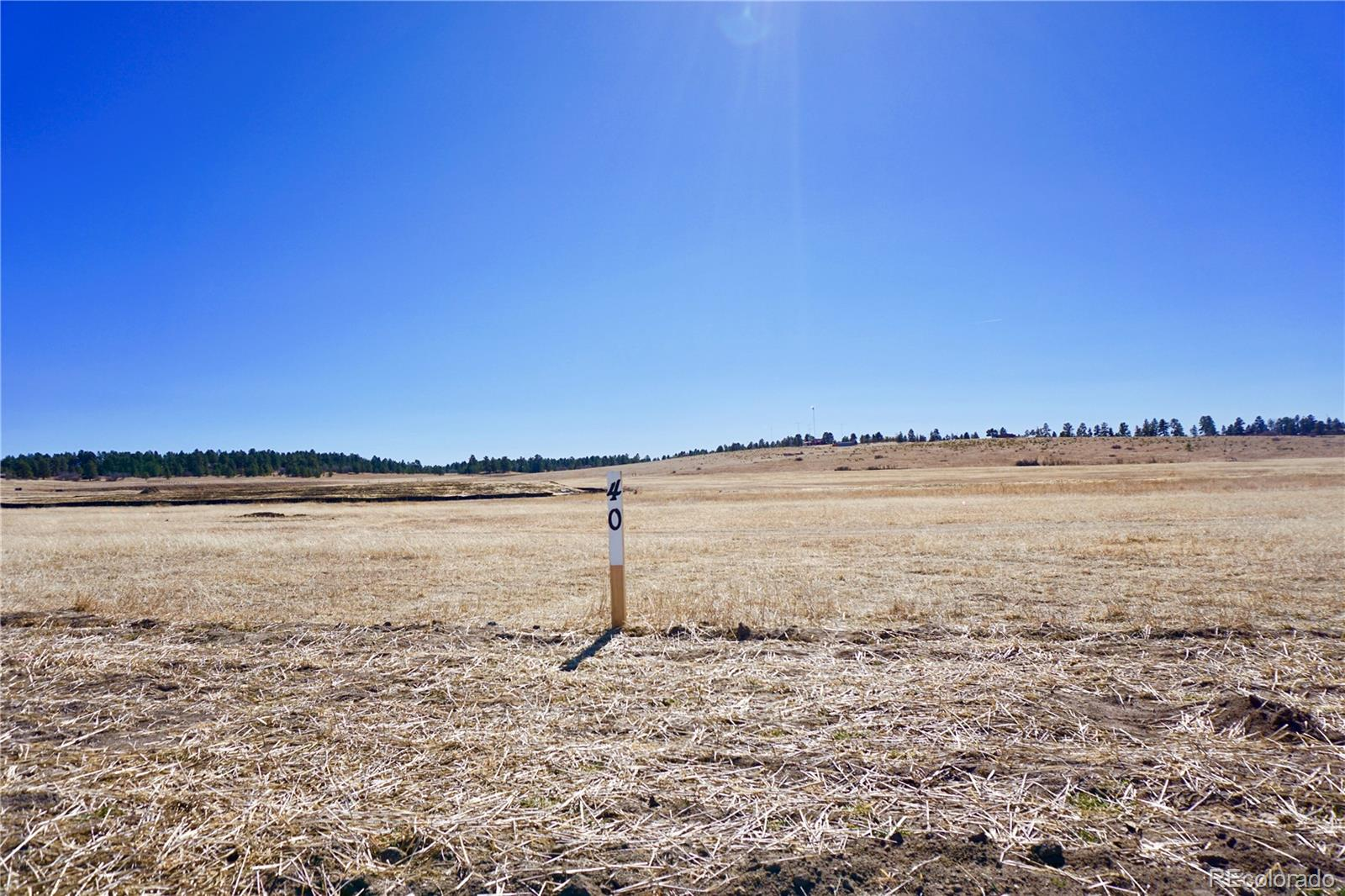 2742 N Flintwood Road Property Photo - Franktown, CO real estate listing