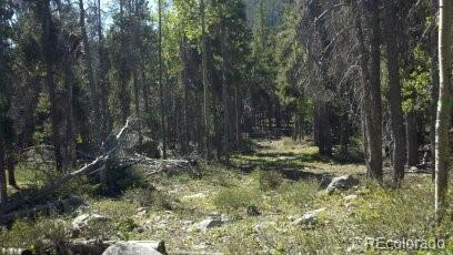 17852 Point Homestead 2 Mc Property Photo - Monarch, CO real estate listing