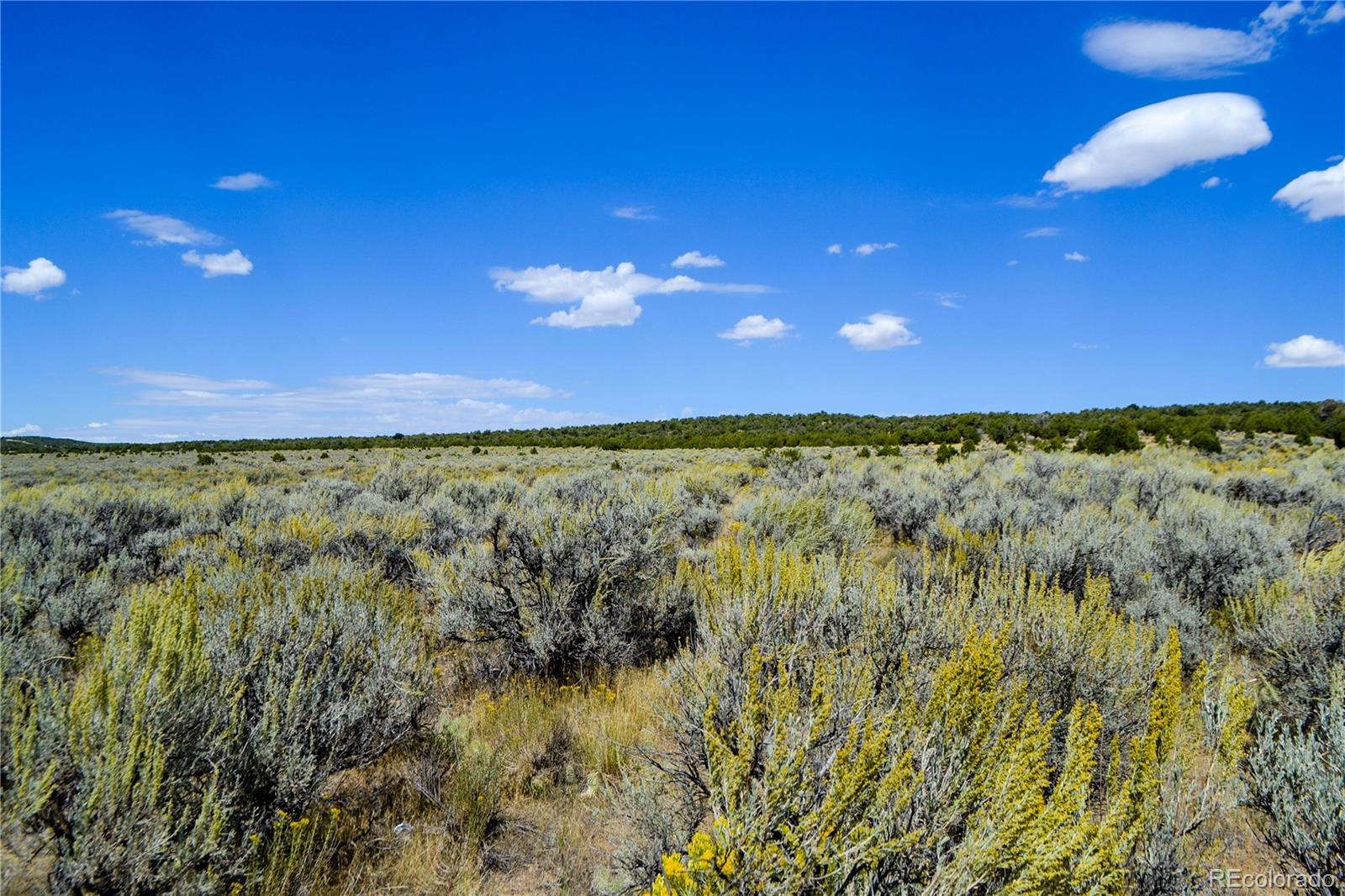 Parcel D State Highway 318 Property Photo - Maybell, CO real estate listing