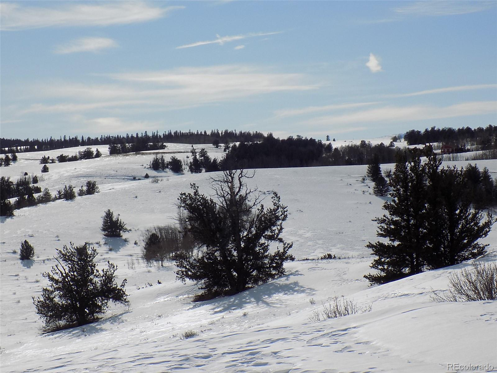 1393 Lippzana Road Property Photo - Jefferson, CO real estate listing