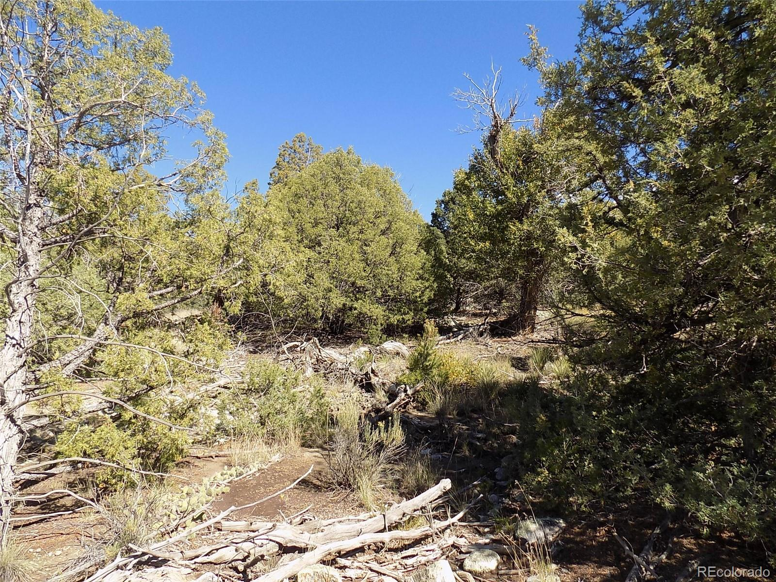20 Pioneer Place Property Photo - Mosca, CO real estate listing