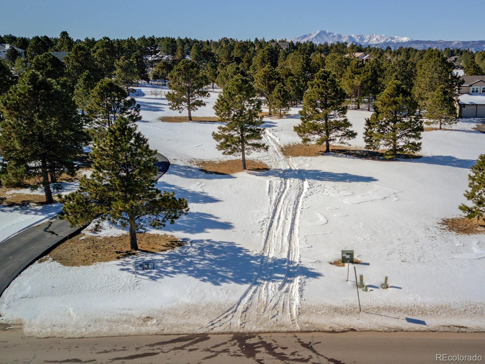 645 E Kings Deer Point Property Photo - Monument, CO real estate listing