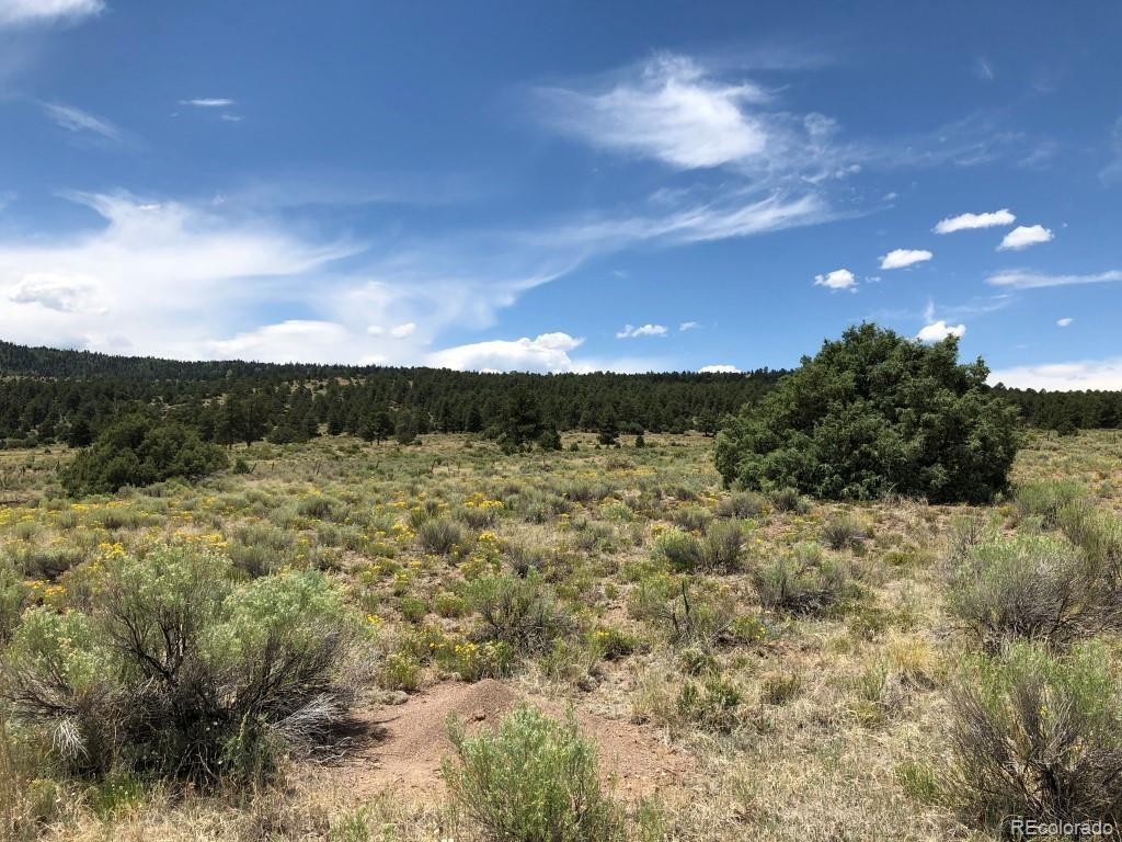 28 Evergreen Ct Property Photo - Antonito, CO real estate listing