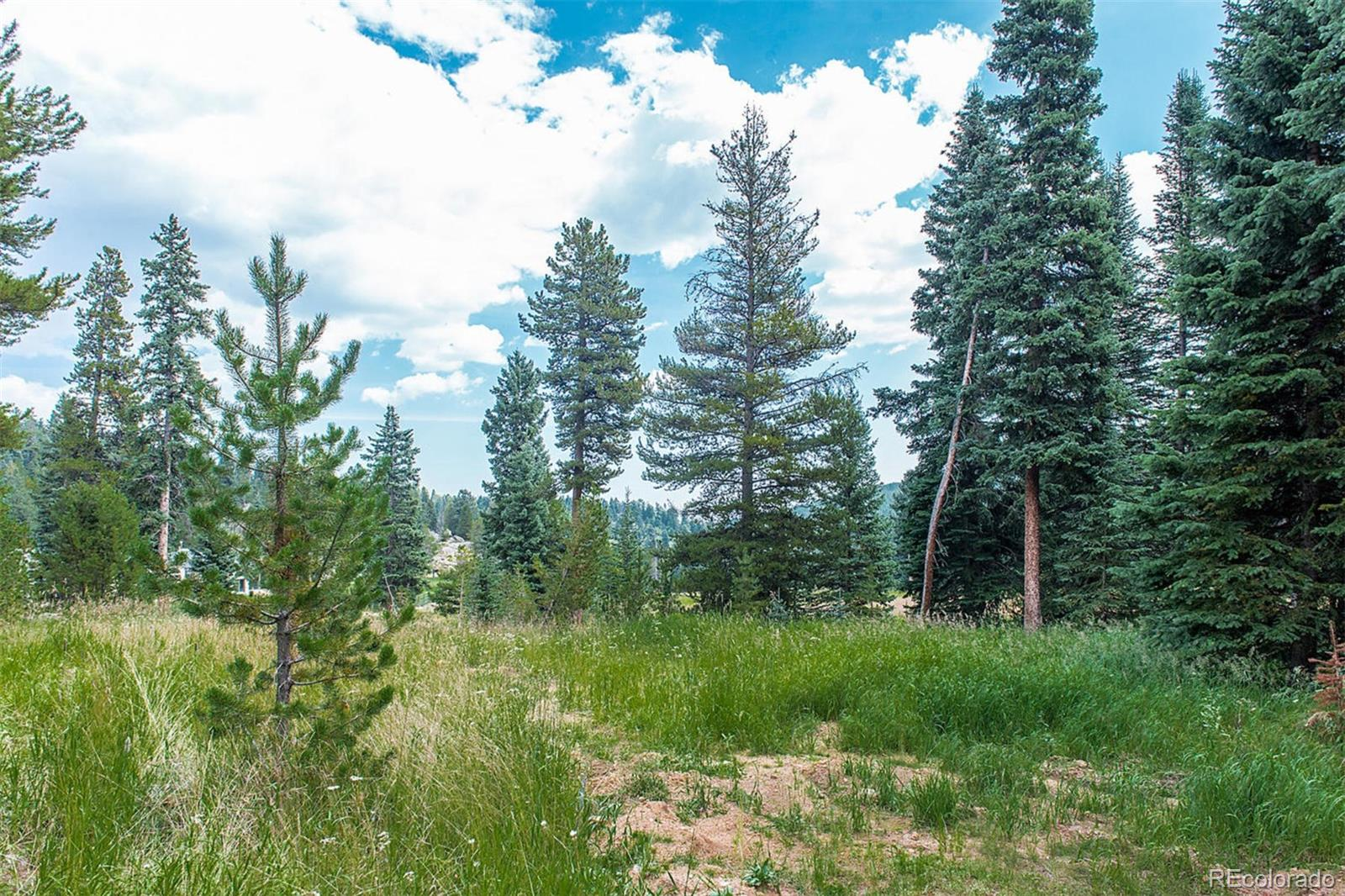 TBD Lot Buffalo Park Road Property Photo - Evergreen, CO real estate listing