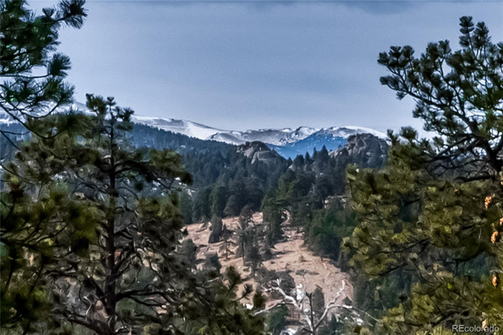 4840 Forest Hill Road, Evergreen, CO 80439 - Evergreen, CO real estate listing