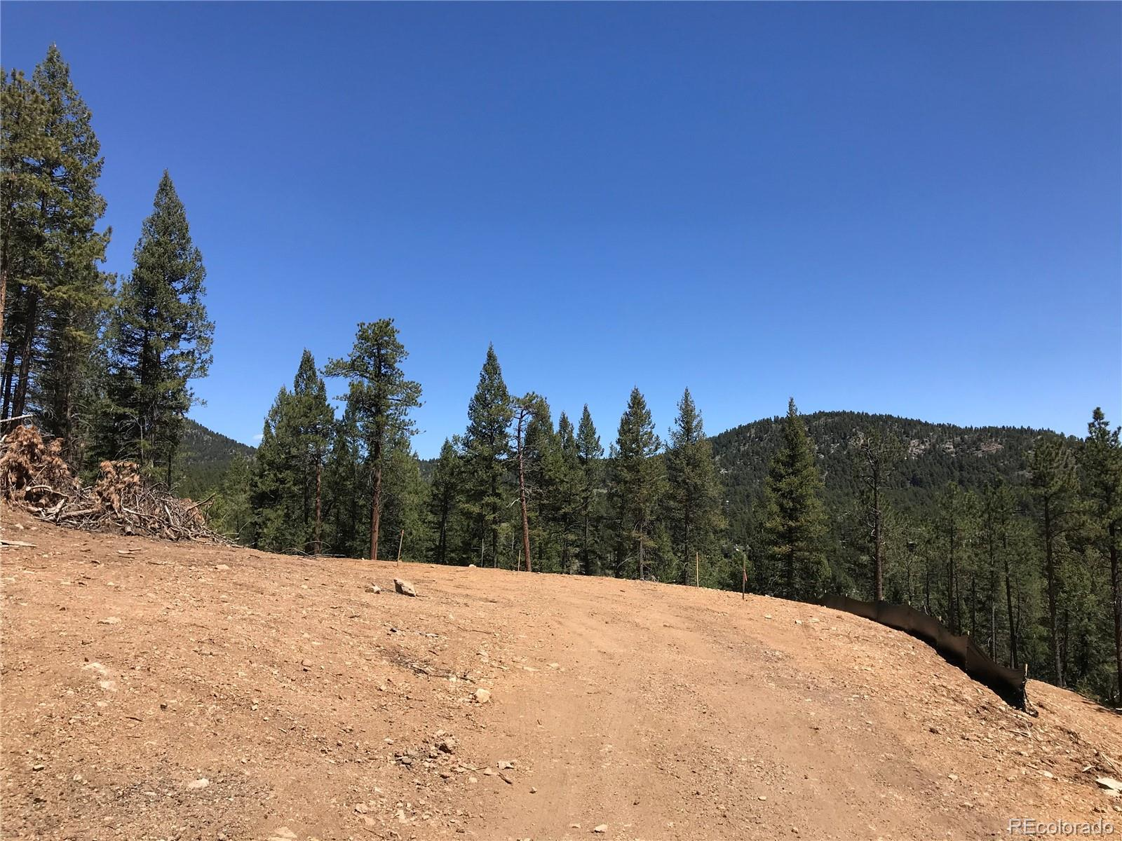 21549 Trappers Trail Property Photo - Morrison, CO real estate listing