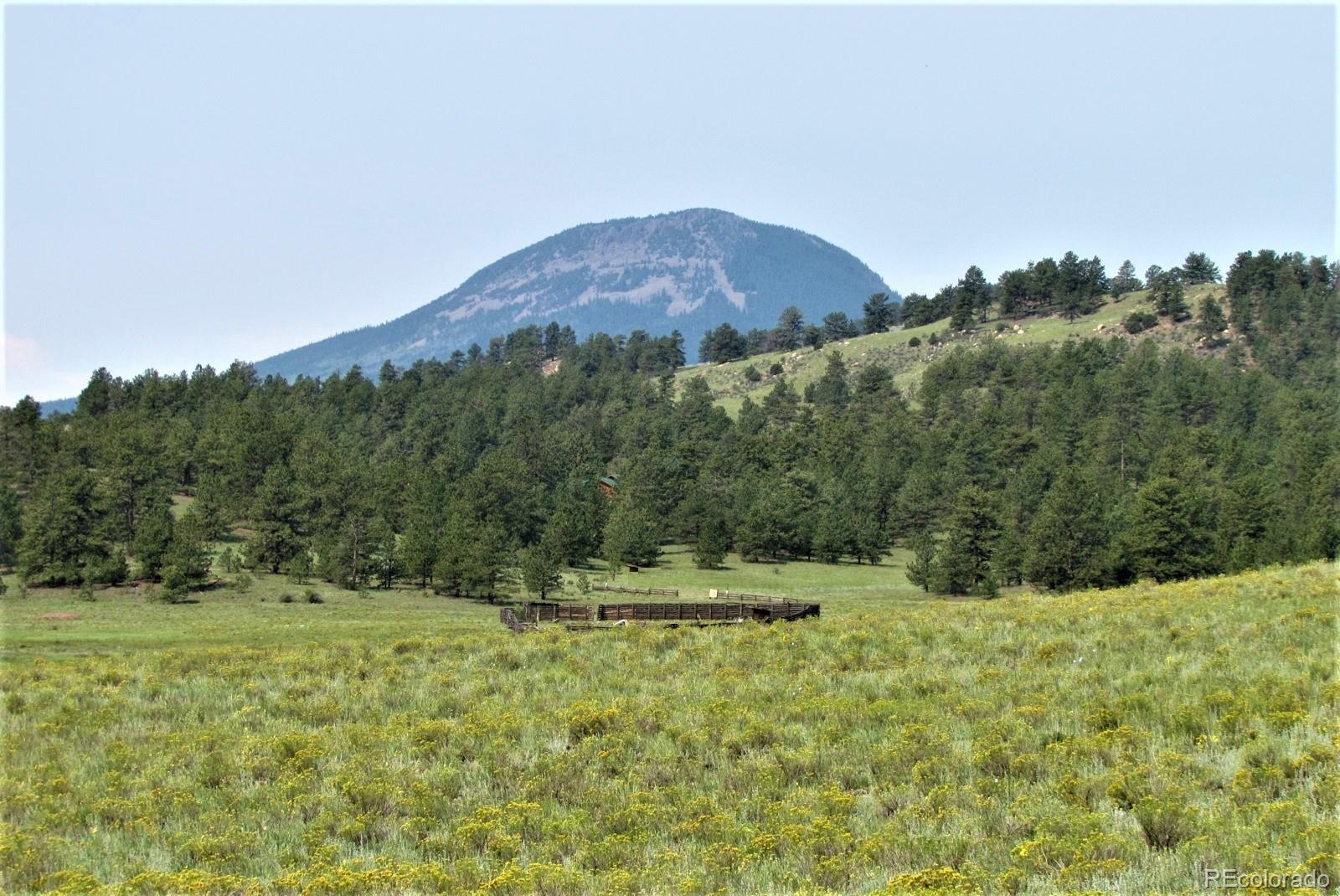 128 Badger Lane Property Photo - Guffey, CO real estate listing