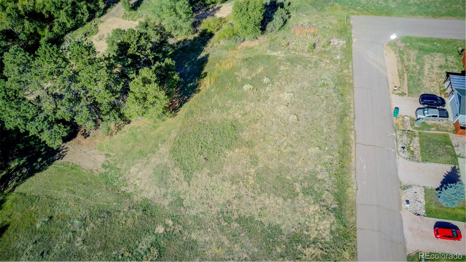 33 Mystic Lane Property Photo - Palmer Lake, CO real estate listing