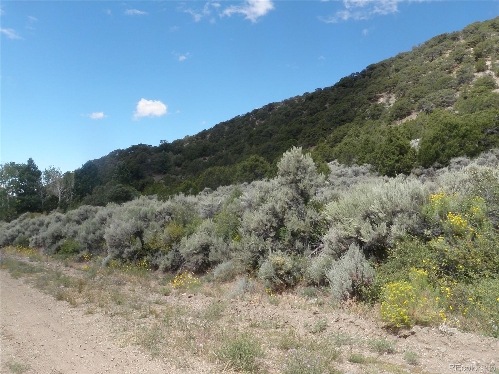 TBD Jewitt Drive Property Photo - Fort Garland, CO real estate listing