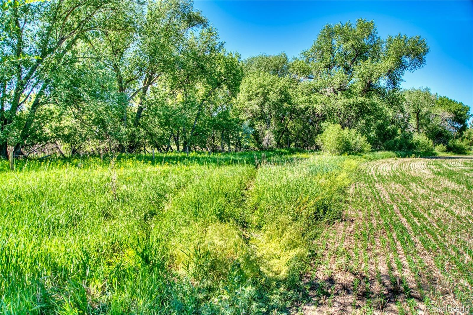 4801 East Harmony Road, Fort Collins, CO 80528 - Fort Collins, CO real estate listing