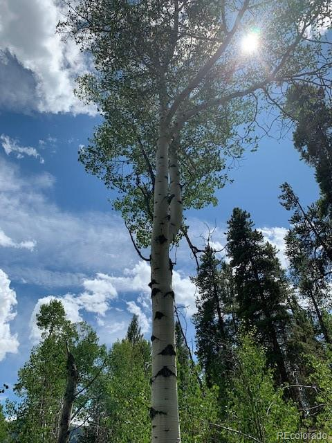 CR 26 Gordon Acres Property Road Property Photo - Twin Lakes, CO real estate listing