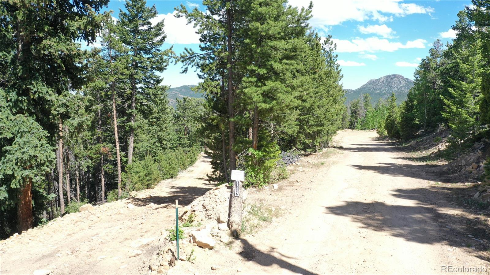 11337 Coal Creek Heights Drive Property Photo - Golden, CO real estate listing
