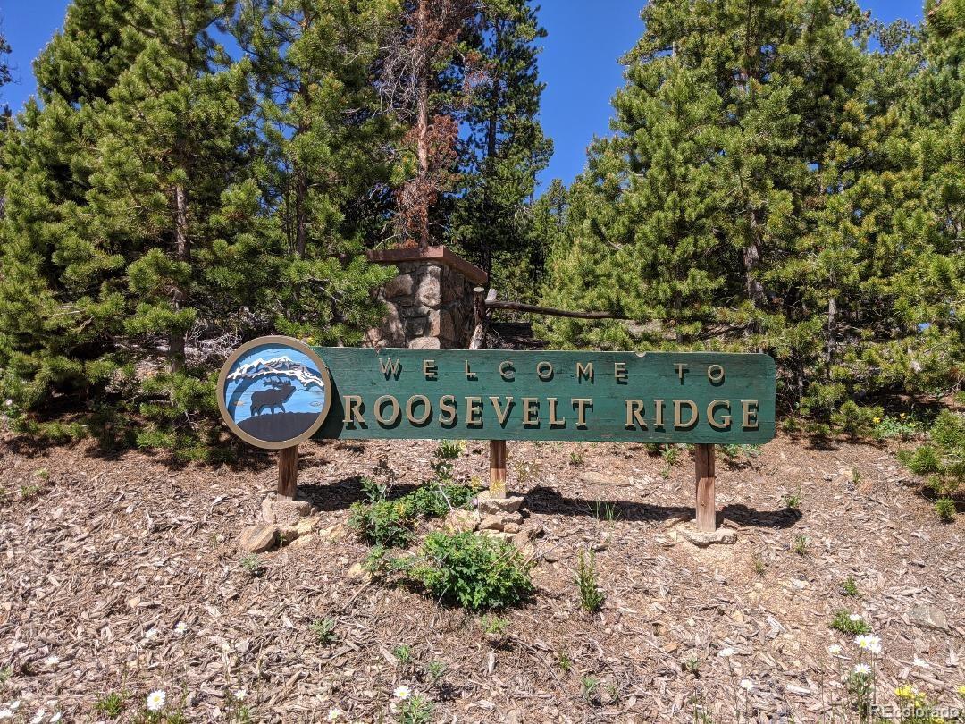 8 Roosevelt Ridge Property Photo - Black Hawk, CO real estate listing