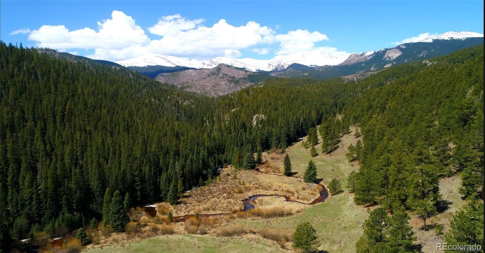 7824 Upper Bear Creek Road Property Photo - Evergreen, CO real estate listing