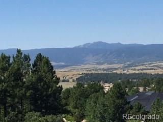 955 Castle Pines North Drive Property Photo - Castle Rock, CO real estate listing