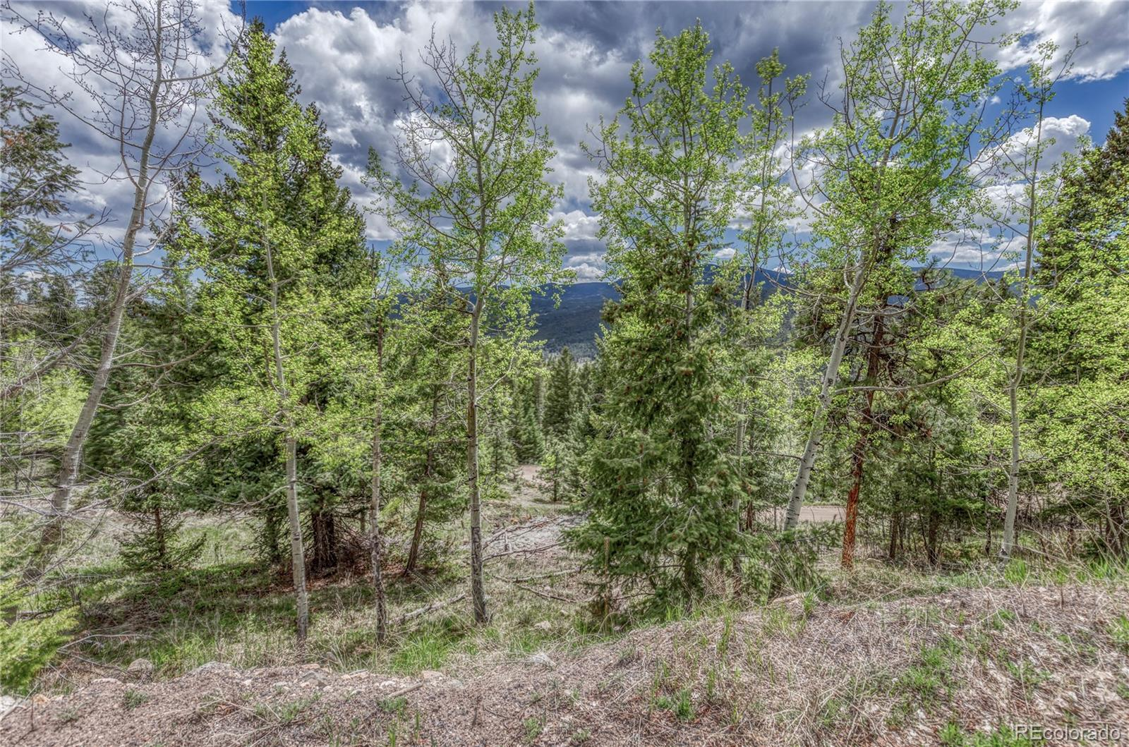 0 Lynx Lair Road Property Photo - Evergreen, CO real estate listing