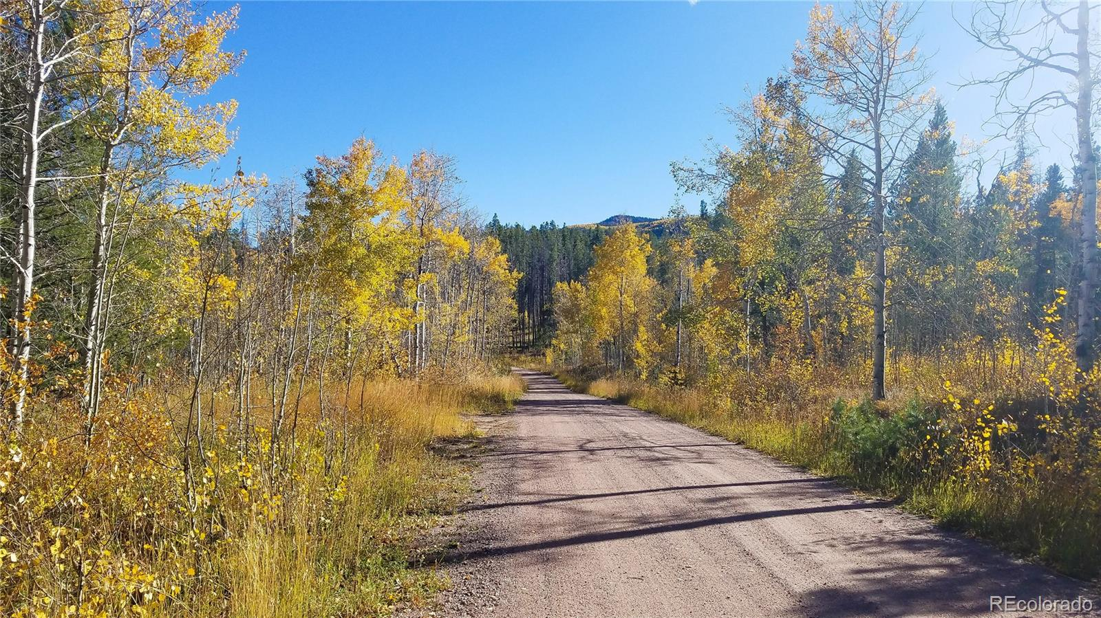 Lot 49 Black Horse Ii Property Photo