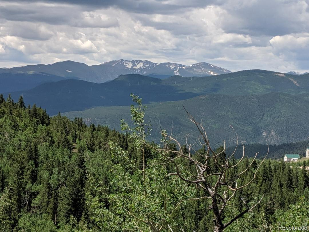 0 Bald Mountain and York Gulch Roads Property Photo - Idaho Springs, CO real estate listing