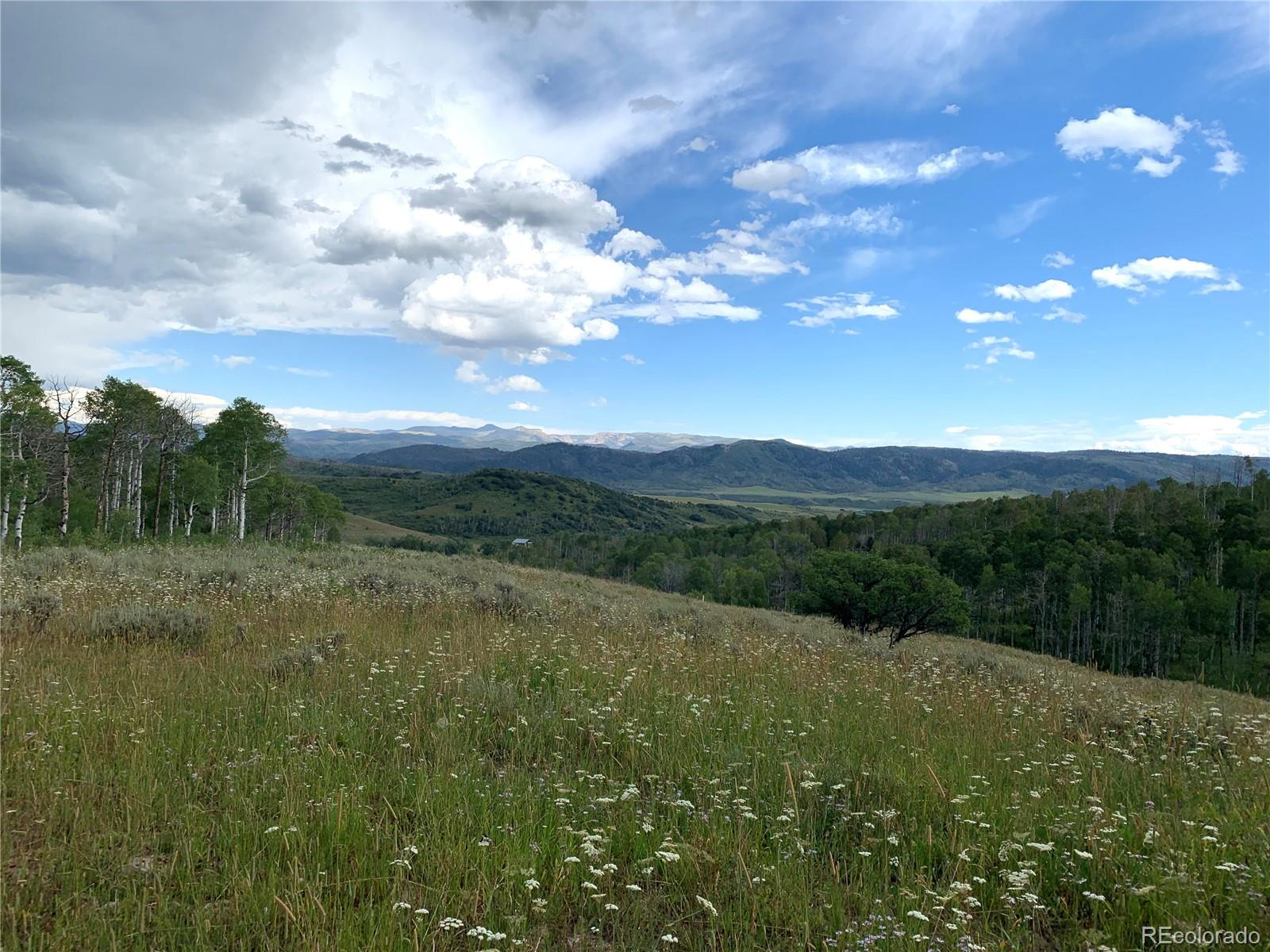 55916 Hannahs Way Property Photo - Clark, CO real estate listing
